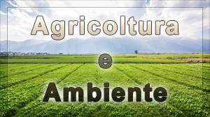 AGRICOLTURA E AMBIENTE